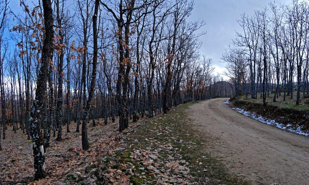 Pista Forestal Cascada del Purgatorio