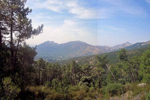 Monte Abantos desde el Tomillar (San Lorenzo de El Escorial)