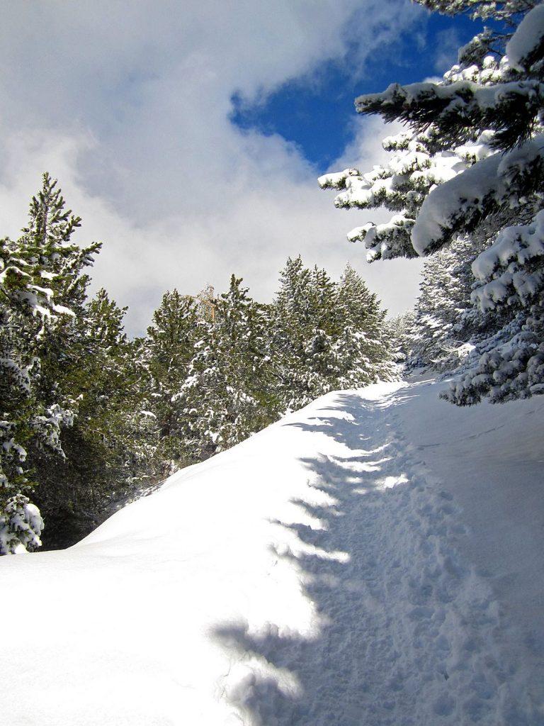 Pista Forestal – La Pinilla – Collado del Aventadero