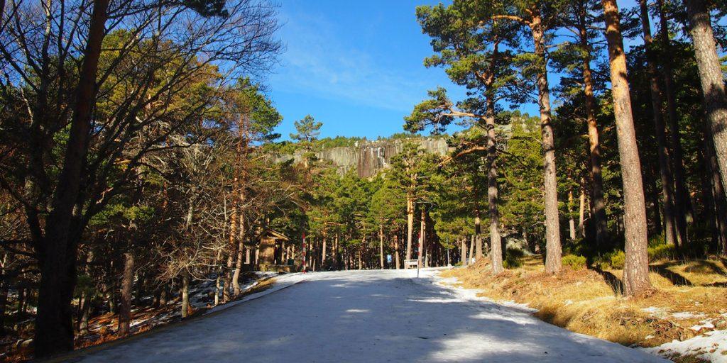Pista forestal de acceso a la Laguna Negra desde el Parking.