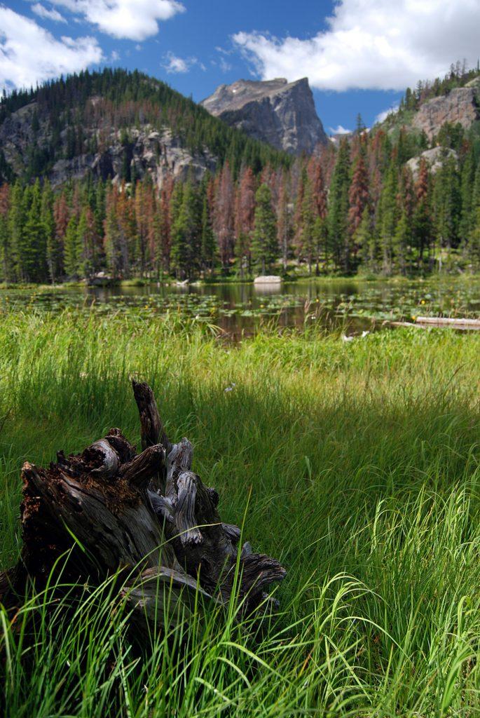 Hallett Peak. Parque Nacional de las Rocosas, Colorado