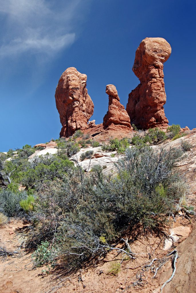 Arches National Park, Utah. Garden of Eden.
