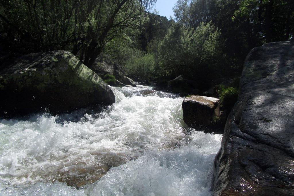 Curso alto del río Manzanares