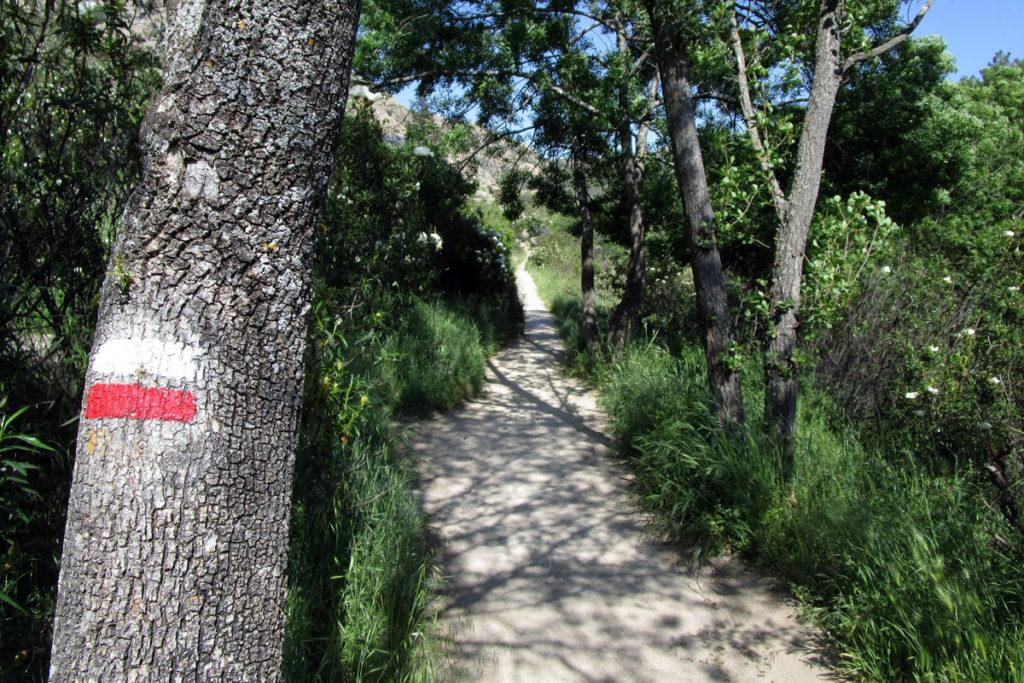 Camino del Tranco - La Pedriza