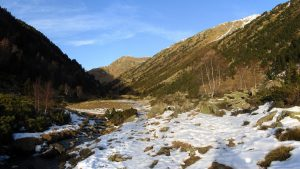 Vall de Rialb - Port de Siguer