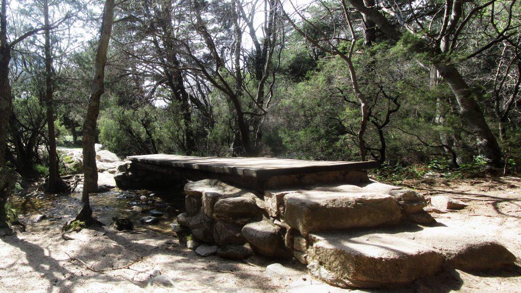 Arroyo de la Ventana - La Pedriza